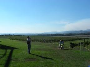 tr-aus20-Yarra-Valley-Vineyard