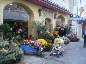 tr-prov10-Flower-Shop-Vaison-la-Romaine