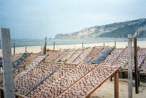 drying fish - Nazare