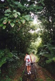 Hiking Grenada