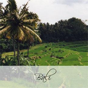 tr-main-Bali-title-page